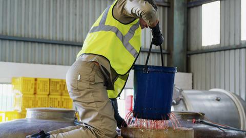 Worker filtering olive oil Live Action