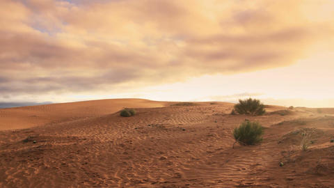 Desert sand dunes ripple with morning light cloudy sky timelapse Footage
