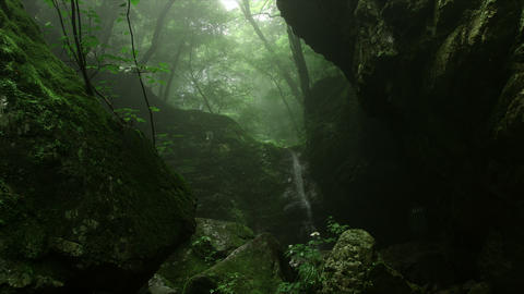 Dynamic tear with mist in forest different angle, Rock garden Ootsuki in Japan  Footage