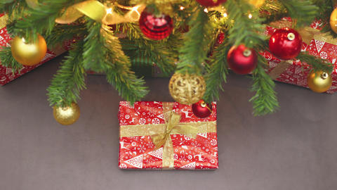 Stop motion animation of Christmas present appear under the Christmas tree Animation