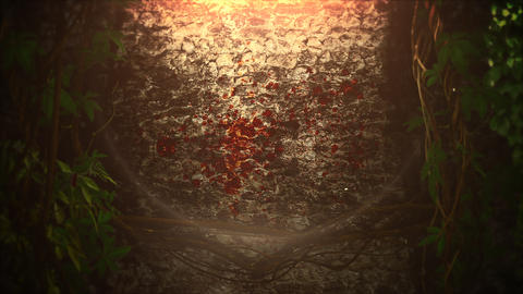 Mystical horror background with dark blood and motion camera. Holiday Halloween, abstract backdrop Animation