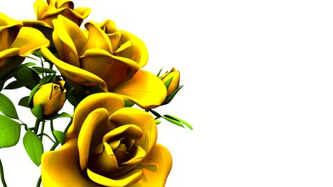 Yellow Roses Bouquet On White Text Space Photo