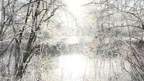 Sunny Winter Scenery Background Animation