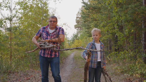 Father and son collecting dry firewoods in summer forest at camping. Friendly Live Action
