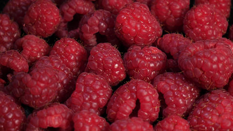 Fresh raspberry in extreme close up rotating Live Action