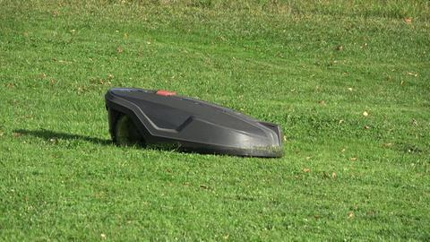 Futuristic modern robotic lawn mower cuts grass Live Action