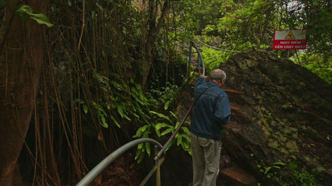 Backside Man Goes down Steps to Wooden Bridge in Park Tropics Footage