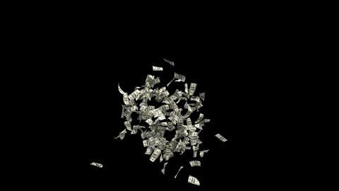 Dollars Money Falling 5 Animation