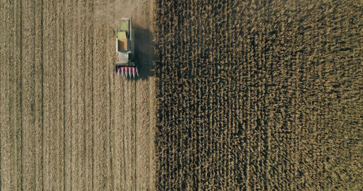 Combine harvester coming back from harvesting corn aerial drone shot agriculture 01 Live Action