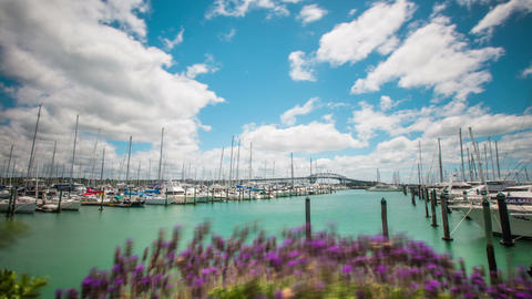 Time Lapse - Beautiful Clouds Moving Over Harbor of Auckland, New Zealand 영상물