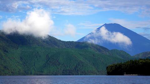 富士山と湖と鳥 Footage