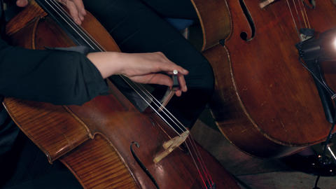 4K Cellist Playing / Violoncellist Playing / Orchestra Concert Live Action