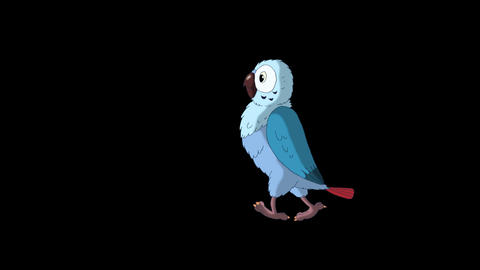 Blue Parrot Walks. Classic Disney Style Animation with Alpha Channel Animation
