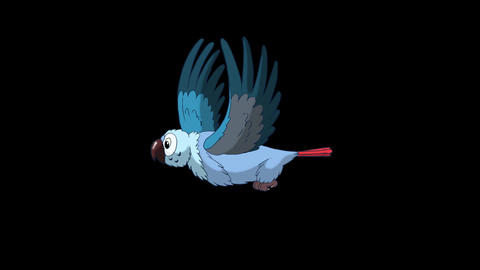 Blue Parrot Flies. Classic Disney Style Animation with Alpha Channel Animation