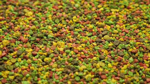 Multicolored Granules Feed for Aquarium Fish Live Action