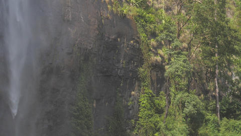 waterfall at rocky cliff with green trees and grass slow Live Action