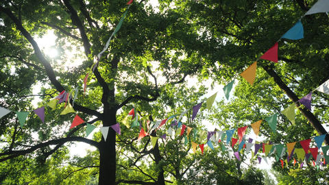 Colorful flags hanging on branches of trees as festive decoration for outdoor Live Action