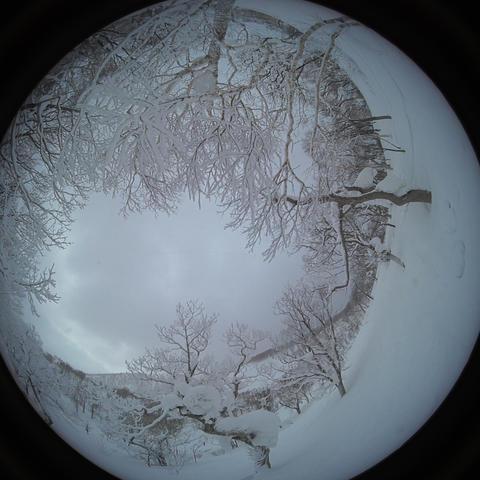 apow powder snow Snow mountain forest landscape Rime landscape 2 Live Action