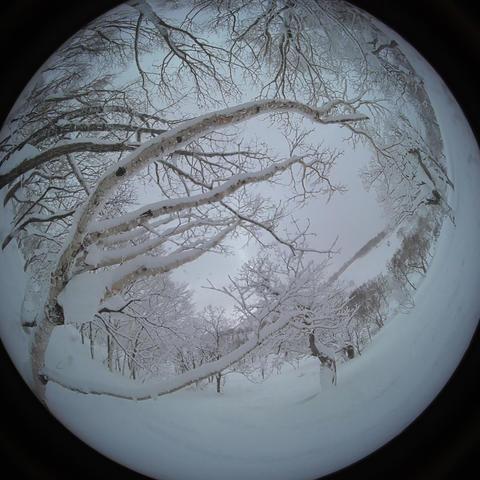 japow powder snow selfy Snow mountain forest landscape Rime landscape 2 Live Action