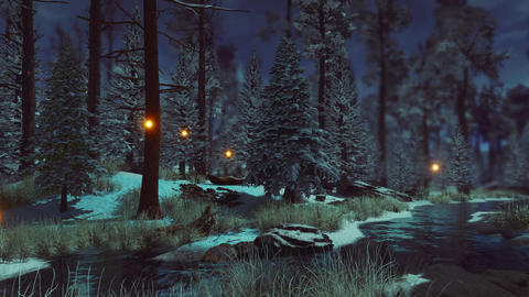 Magical firefly lights in dark winter forest at dusk Live Action