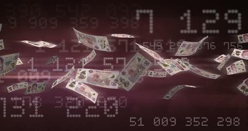 Flying Mexican Pesos 애니메이션