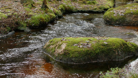 stream among huge mossy boulders Live Action
