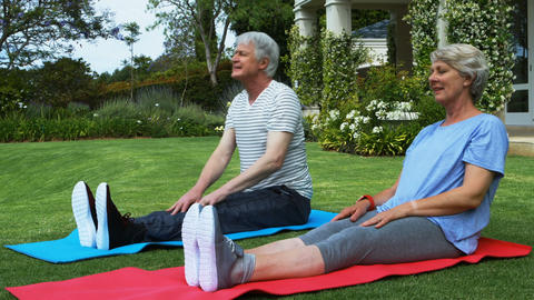 Senior couple performing stretching exercise on exercise mat Live Action