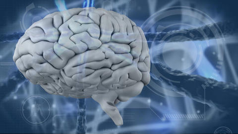 Digital generated video of human brain 4k Animation
