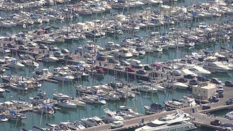 Harbor Or Marina With Boats And Yachts Live Action