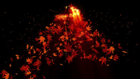 Spin of autumn leaves,Maple,CG Animation Animation