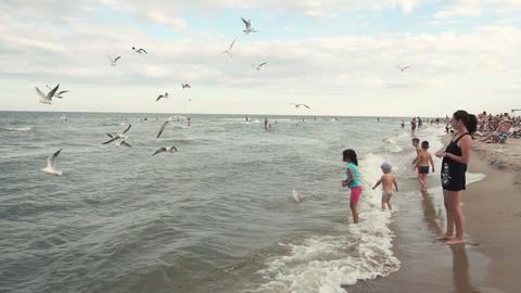 126 Family feeding seagulls Footage