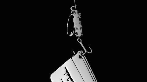 card on the hook spoon-bait phishing Footage