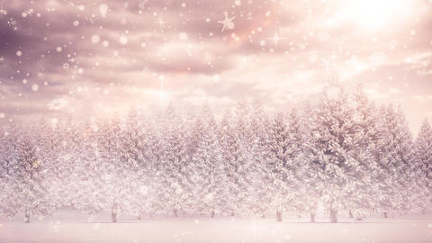 Winter scenery and falling snow Stock Video Footage