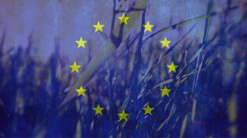 European flag with peaceful cornfield in the background Animation