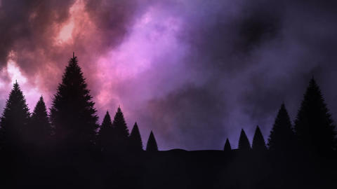 Thunder and conifer forest at night Animation