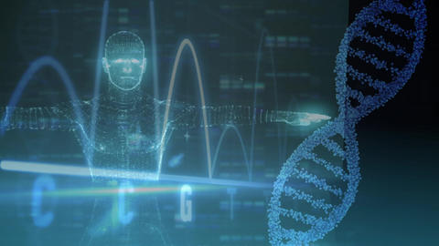 Holographic man animation with DNA and heart beats Animation