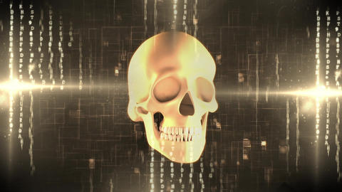 Spinning human skull against letters codes and light effects Animation