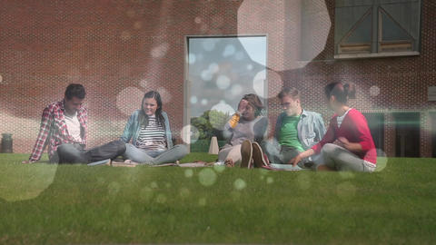 Friends relaxing on grass with bubble light animation Animation