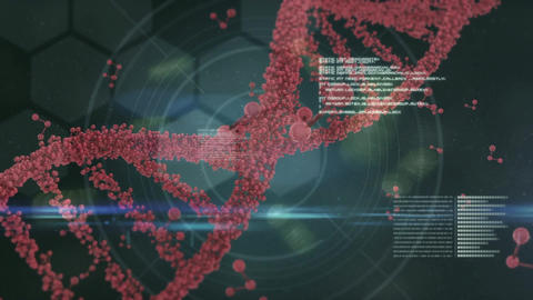 Spinning DNA surrounded by data informations against hexagon shapes Animation