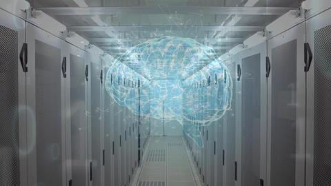 Human brain and binary codes Animation