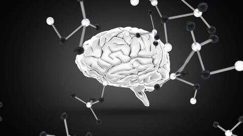 Digitally animated of brain with molecules falling down Animation