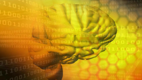 Digital composite of a human brain and the binary system Animation