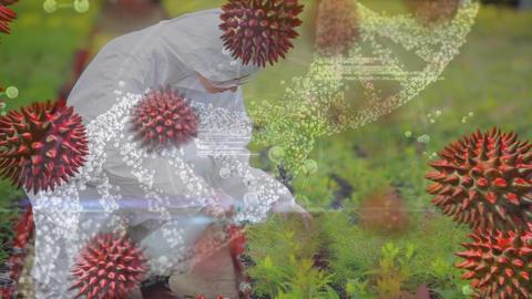 Scientist spraying plants Animation