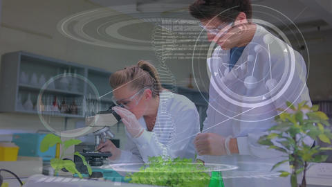 Scientists conducting research in a lab Animation
