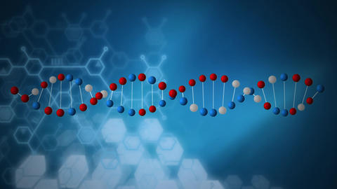 Animation of a red, blue and white molecule of DNA helix Animation