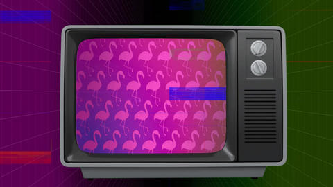 Front view of an old TV switch on with pink flamingos on screen Animation