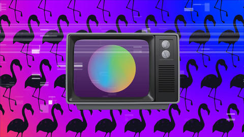 Old TV switch on with a ball on screen against pink flamingos in background Animation