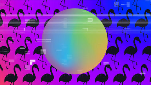 Big ball with gradient colors. Black flamingo on background Animation