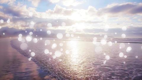 Beach and clear sky Animation