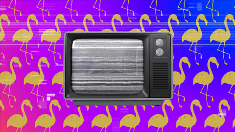 Old television against wallpaper yellow flamingos in background Animation